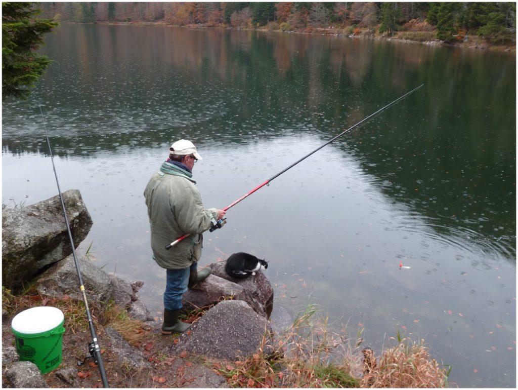 pêche au brochet au vif