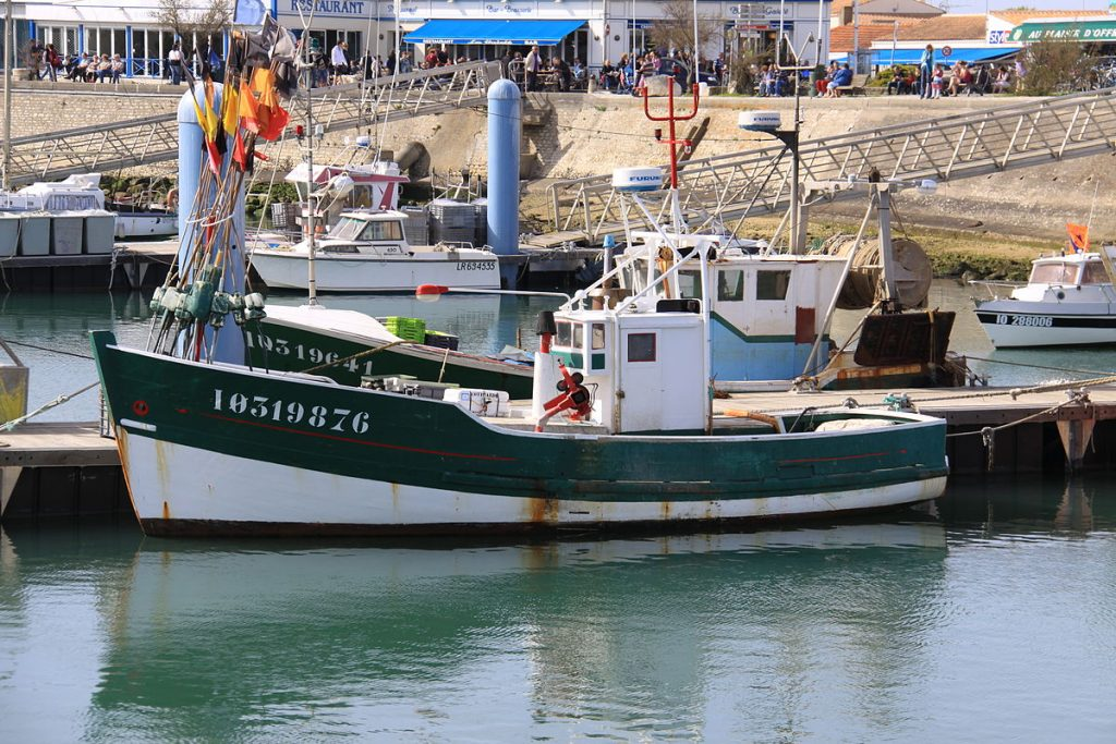 pêche du bar en bateau