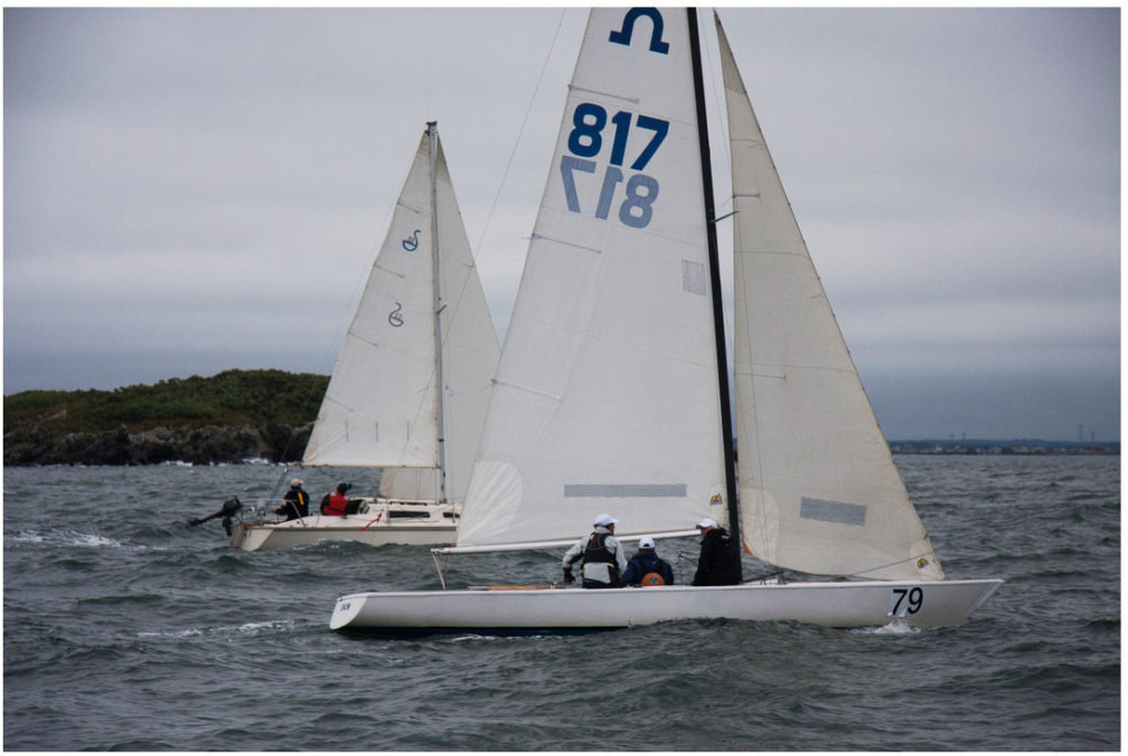 voile windsurf occasion
