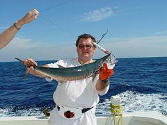 montage pêche mer bateau