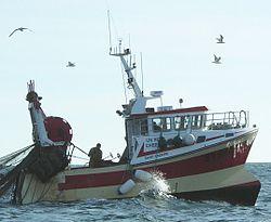 site de vente de bateaux